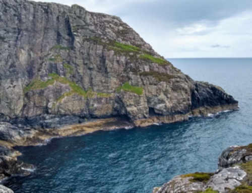 Cliffs, Bogs and Seabirds: counting seabird nests on the Isle of Lewis