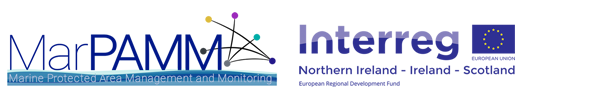 MarPAMM Logo