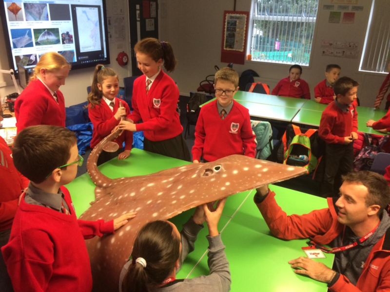 Flappi visits Sacred Heart PS Dundrum Oct 19