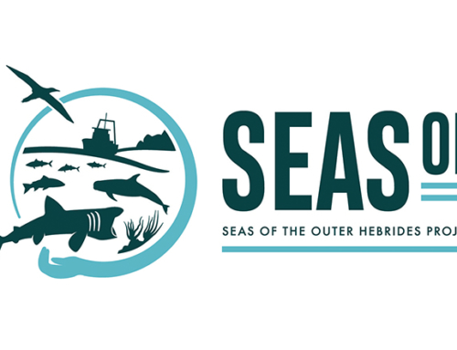New SEASOH project logo
