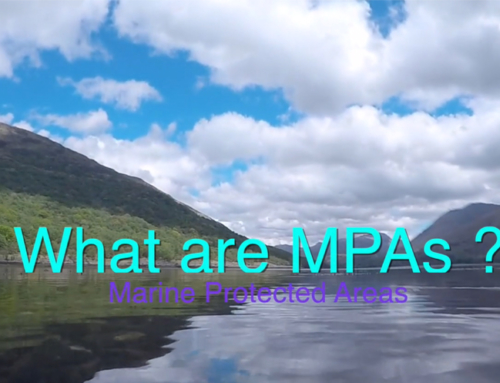 What are MPAs? Short film launched
