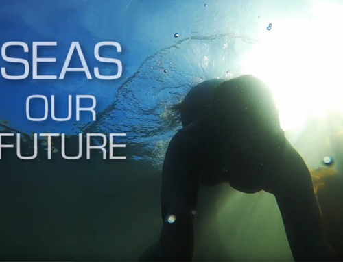 What's your vision for the future of our seas in the Outer Hebrides?